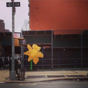 yellow flower yarn bomb in nyc