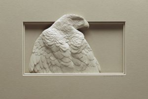 calvin nicholls artwork feature a bird looking to the right